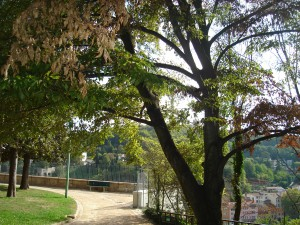 ambiance du parc des Chartreux
