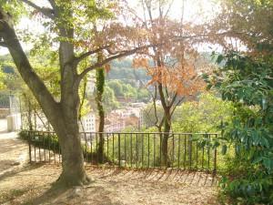 l'automne au parc des Chartreux