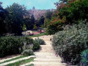 le parc Sutter